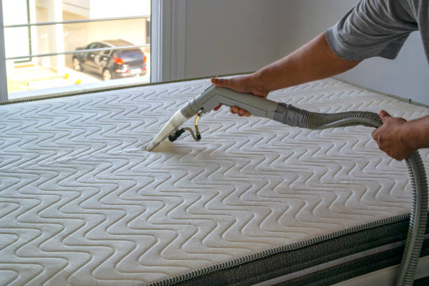 Eco-Friendly Mattress Cleaning Miami