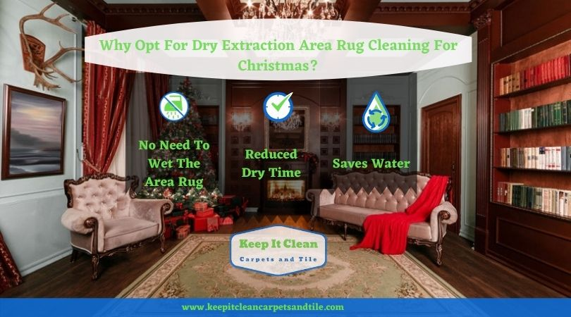 Why Opt For Dry Extraction Area Rug Cleaning For Christmas?